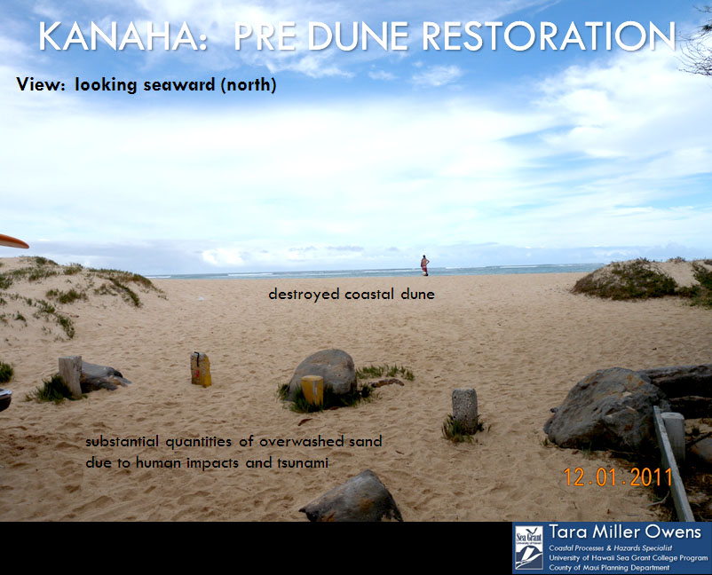 Pre-dune restoration Kanaha