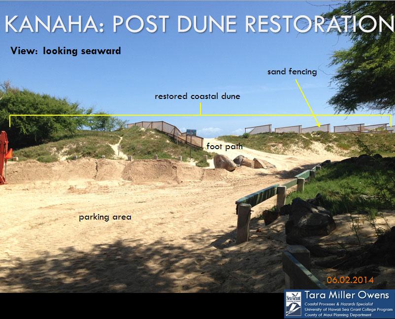 Post-dune restoration