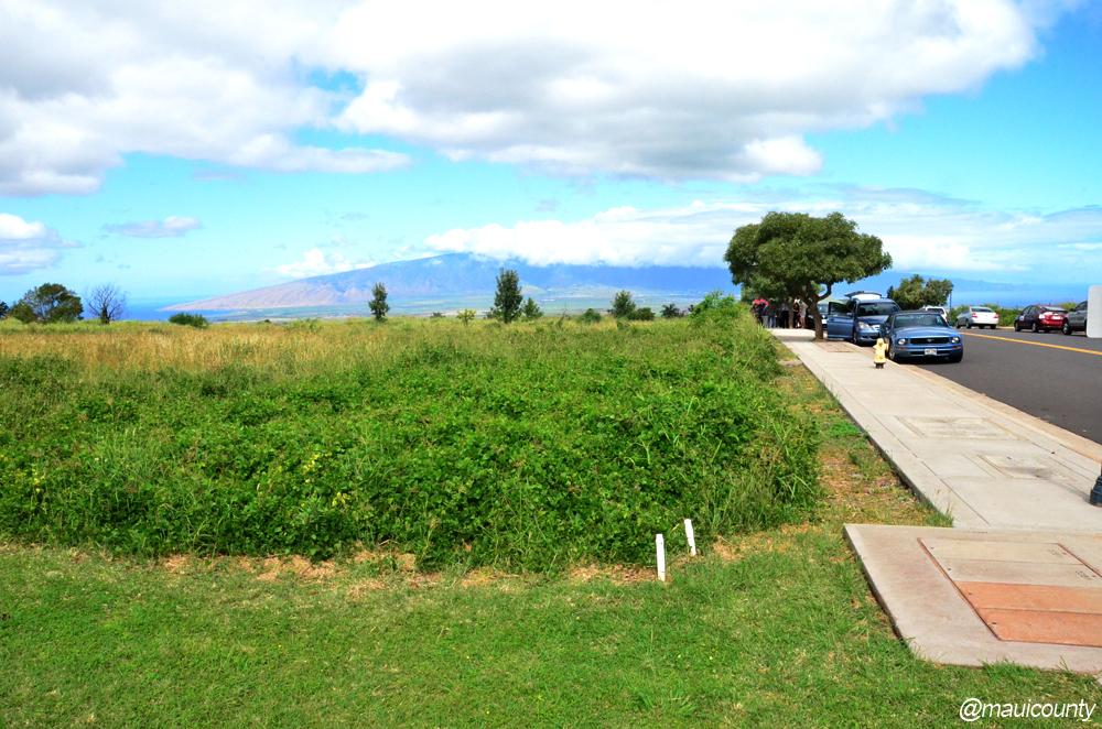 Hale Mahaolu site
