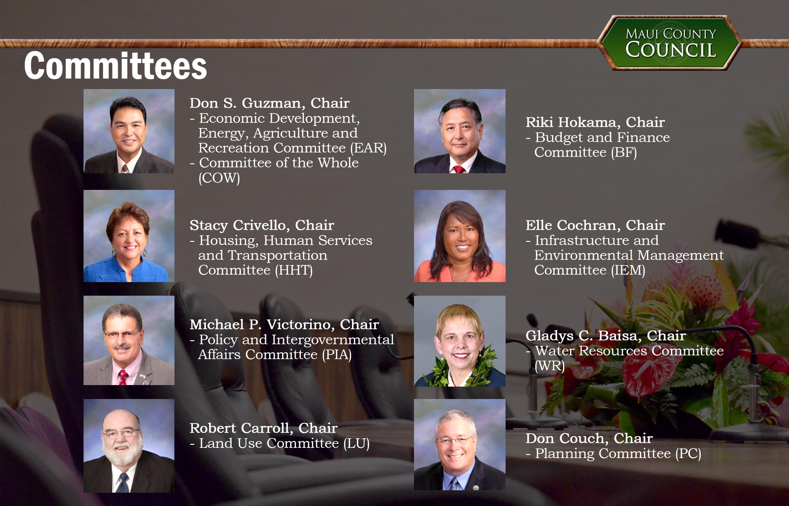 C3M Committees