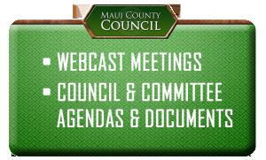 Webcast meetings