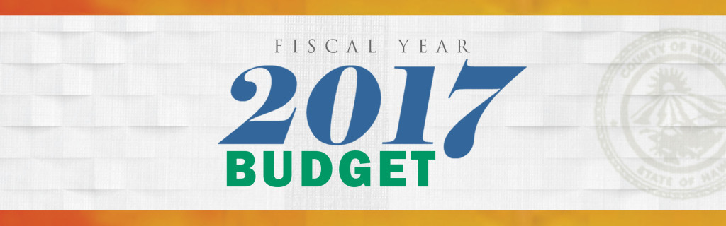 FY2017 budget