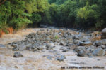 Wailuku River flooding